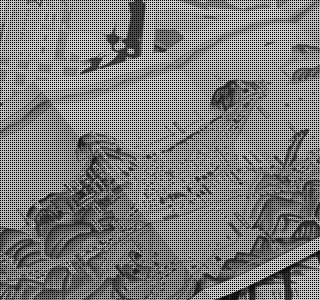 観光パンフレット・鳥瞰図