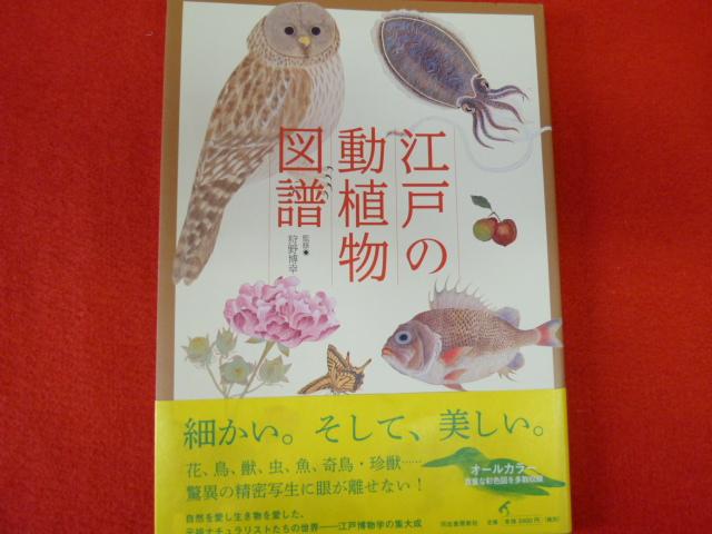 【江戸の動植物図譜】入荷!の画像