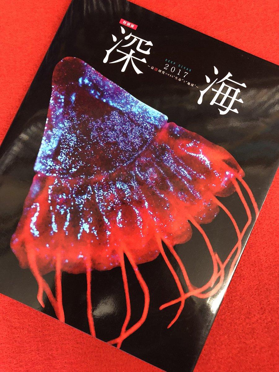 """【深海~最深研究でせまる""""生命""""と""""地球""""~】買取は小川書店までの画像"""