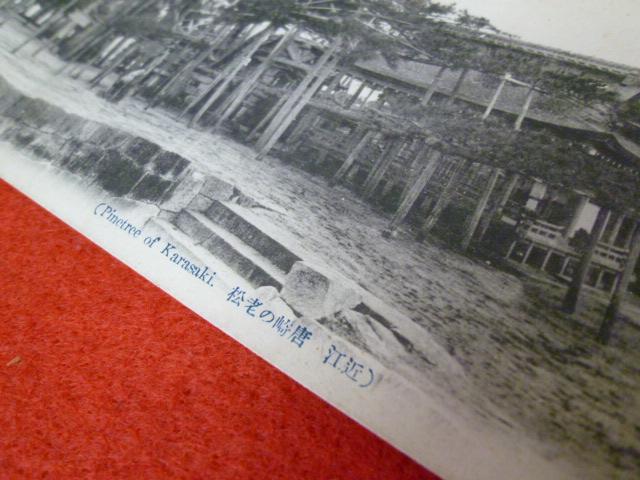 戦前絵葉書【近江 唐崎の老松】買取は小川書店への画像